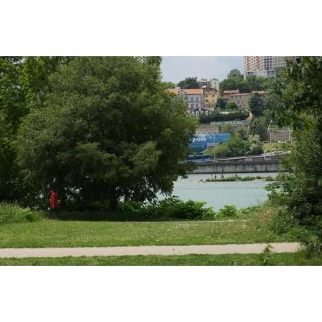 Parc du Confluent