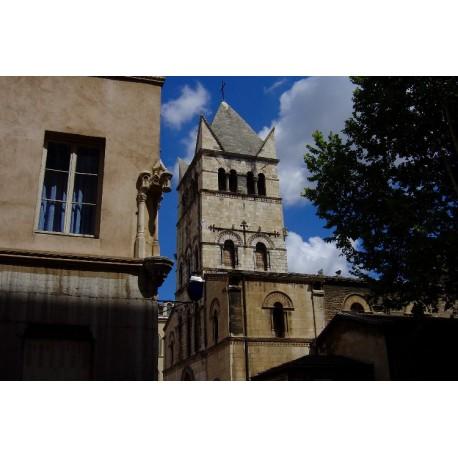 Rue Bourgelat