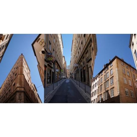 Rue Romarin