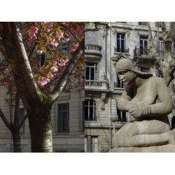 Place Ollier