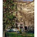 Place Antonin Gourju