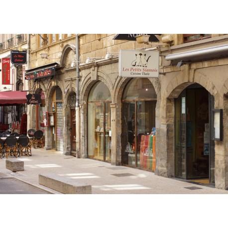 Rue du Palais Grillet