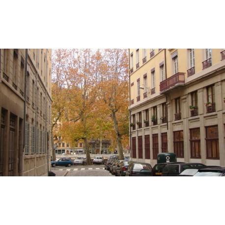 Rue Joannès Drevet