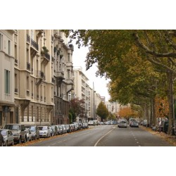 Avenue Verguin
