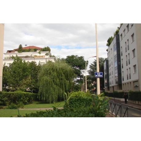 Rue des Dahlias