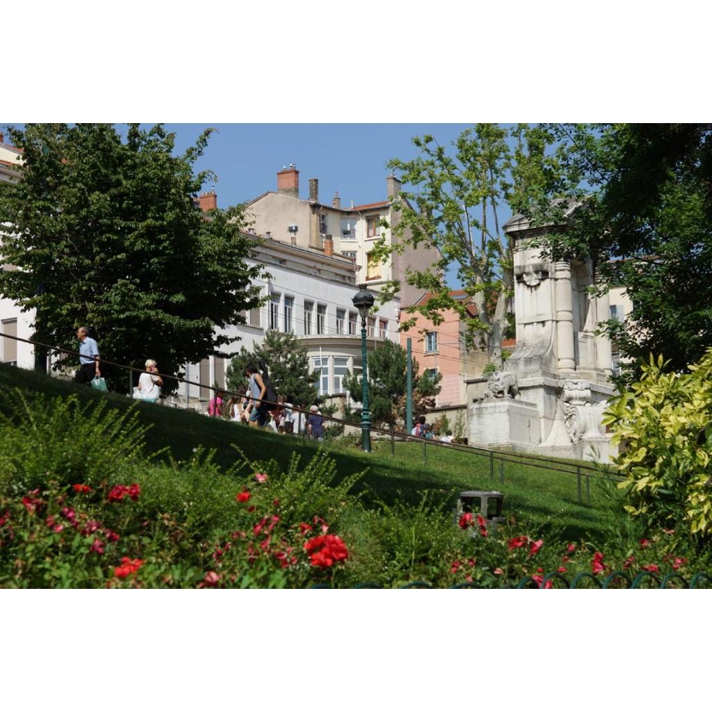 Jardin des plantes les rues de lyon - Jardin des plantes saint etienne ...