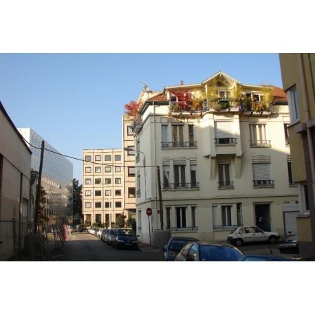 Rue de Genève