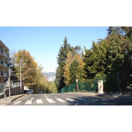 Rue de Champvert