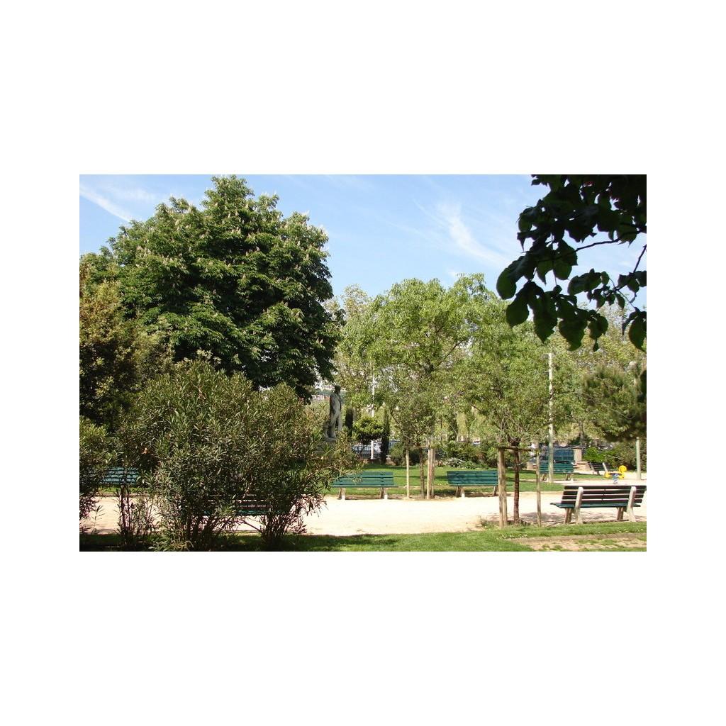 Jardin g n ral charles delestraint les rues de lyon for Jardin lyon
