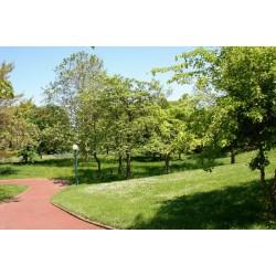 Jardin Pierre Thévenin
