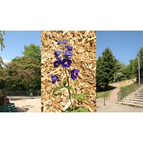 Jardin Francine Chollet