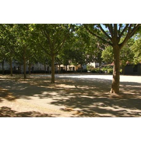 Square du Sacré Coeur