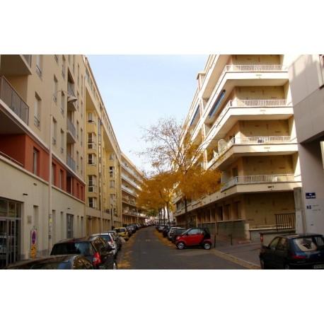 Rue Claude Veyron