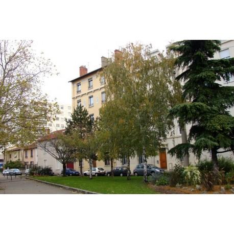 Rue Pierre Verger