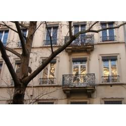 Rue de la Thibaudière
