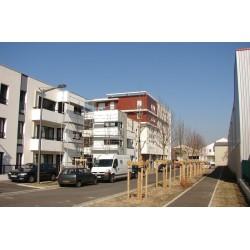 Rue Pierre Bourdeix