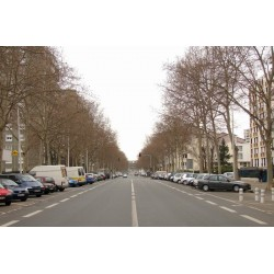 Boulevard Yves Farge