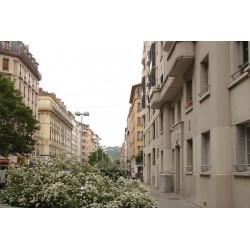 Rue Chevreul