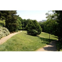 Parc de Montpellas Saint Rambert