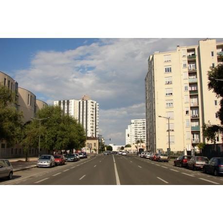 Avenue Debourg