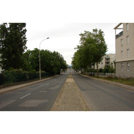Avenue Ben Gourion