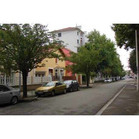Rue du Professeur Morat