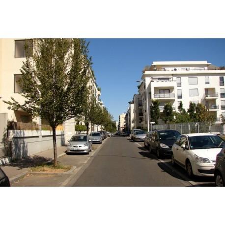 Rue des Alouettes