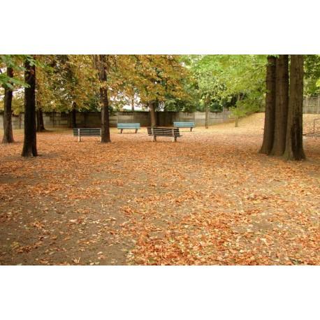 Jardin Antoine Perrin