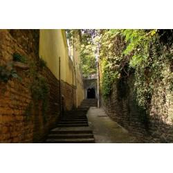 Rue des Contrebandiers