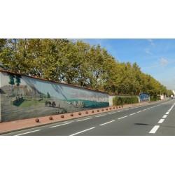 Mur peint Saint Jean de Dieu route de Vienne