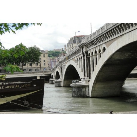 Les berges du Rhône du pont Wilson au pont de la Guillotiere