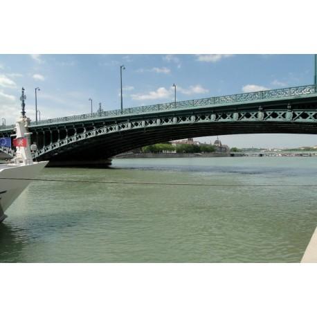 Les berges du Rhône du pont de l'Universite au pont Gallieni