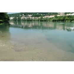 Les berges du Rhône du pont Poincaré à la passerelle de la Paix