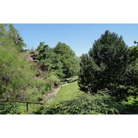 Parc des Berges du Rhône Nord