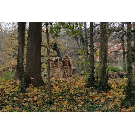 Les feuilles du parc