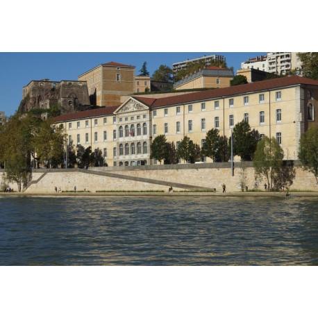 Rives de Saône quai Saint Vincent