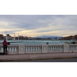 Les ponts du Rhône