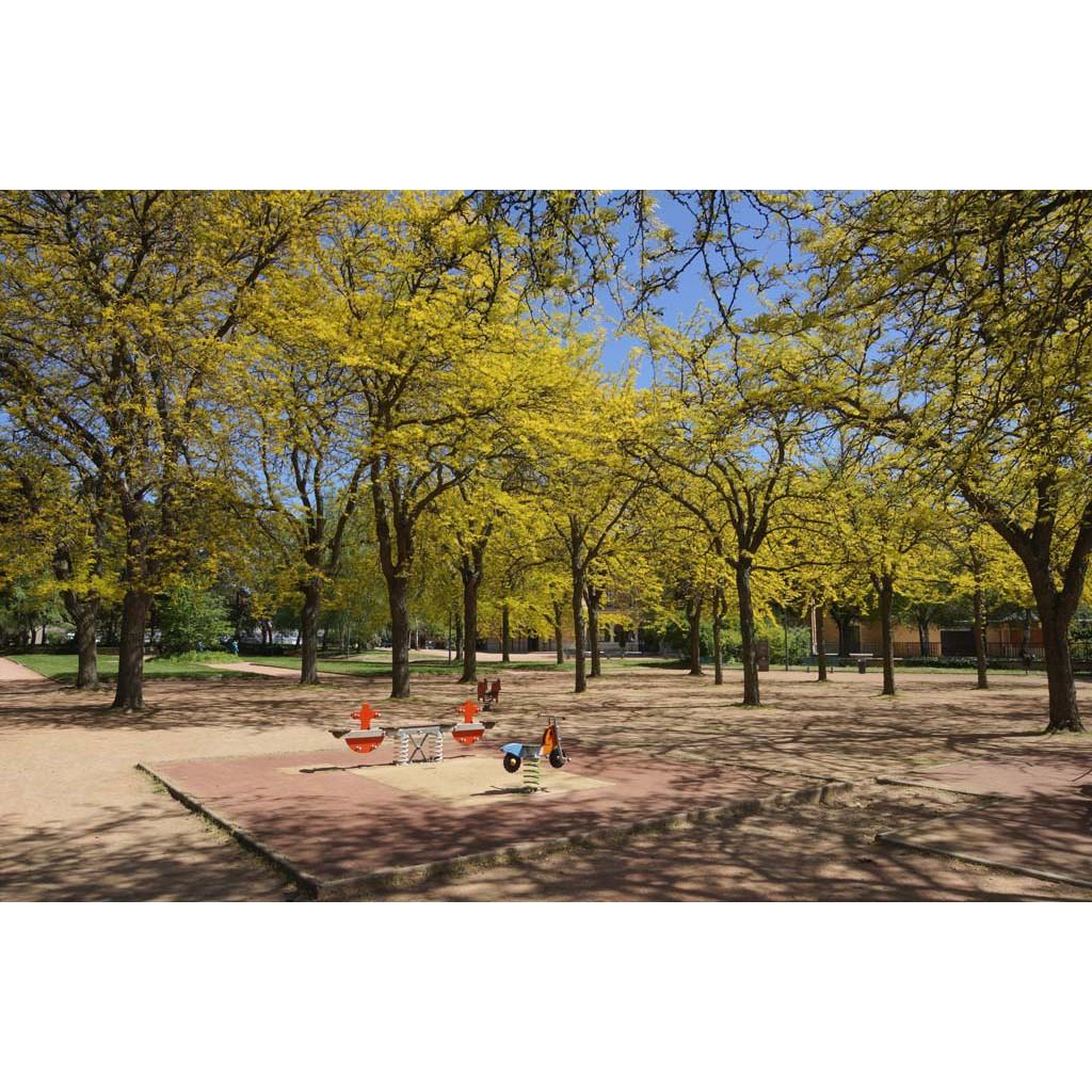 Jardin de la visitation les rues de lyon for Jardin de la